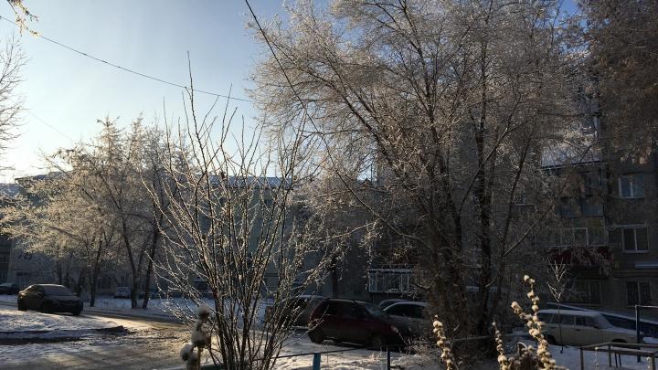 Будет холодно и малоснежно: прогноз погоды на январь 2021 года в Кургане