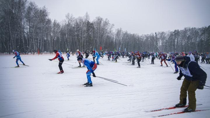 Лыжня без губернатора: 25 ярких фото масштабной гонки (кто-то взял с собой милую собачку)