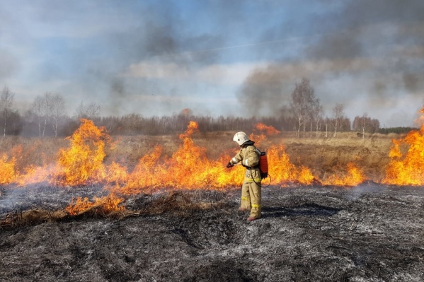 Уже завтра за поджог сухой травы в Челябинской области можно будет получить крупный штраф