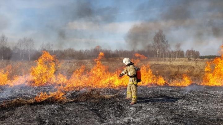 Алексей Текслер запретил жителям Челябинской области разводить костры и ходить в леса