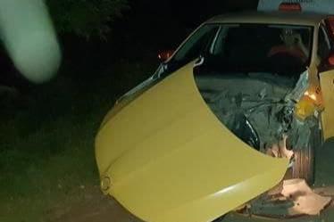 Оторвало капот: в Самаре водитель такси сбил кабана