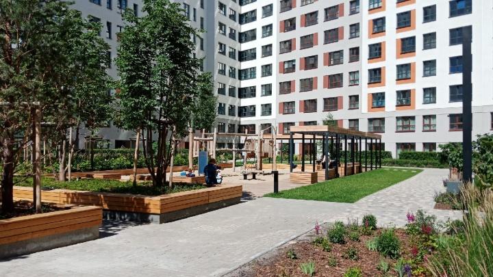 «Брусника» начнет работу в Омске со строительства четырех домов
