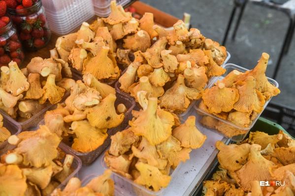 Сезон лисичек на Урале длится недолго, поэтому пробовать фестивальные блюда можно лишь три недели в году
