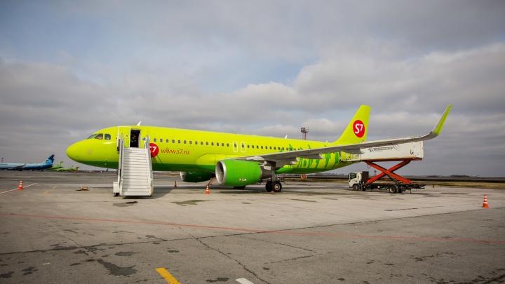 Экипажу самолета из Новосибирска пришлось попросить помощи полиции из-за дебошира