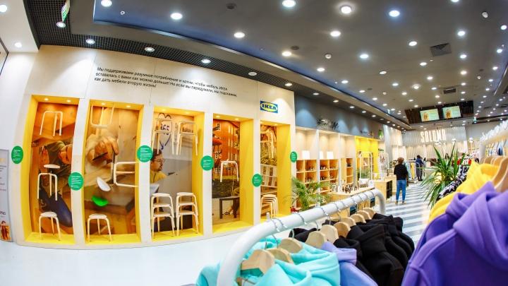 В МЕГЕ открылось эко-пространство, объединившее сибирских предпринимателей