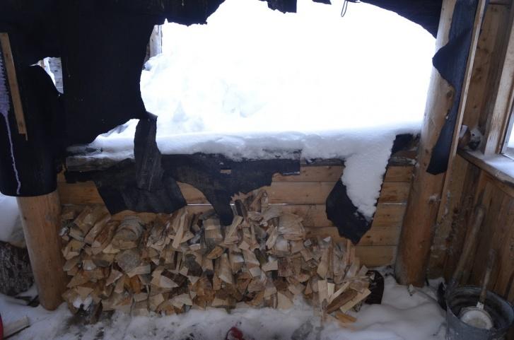 Медведь серьезно повредил дом на кордоне