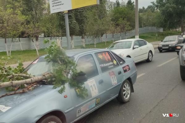 Ветка дерева пронзила автомобиль насквозь<br>