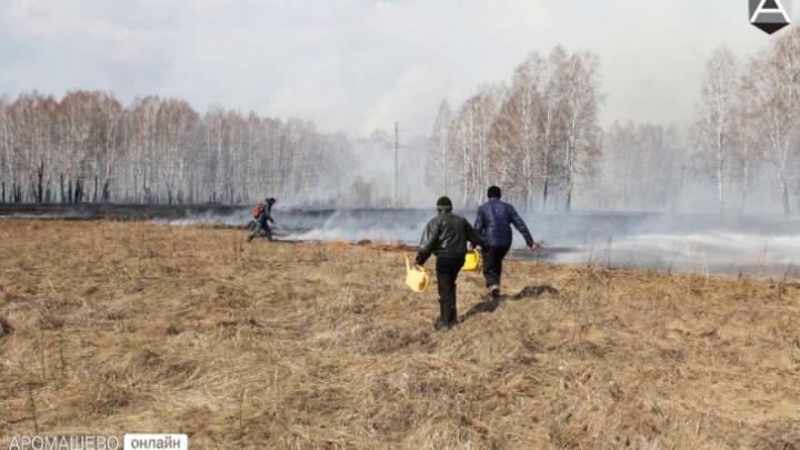 Если огонь не остановить, он может угрожать деревням: губернатор — о пожарах в Тюменской области