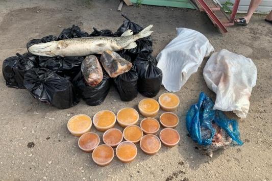 За деликатесы мужчины заплатили почти миллион рублей