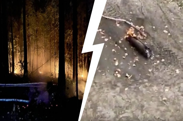 В лесных пожарах на Урале могут быть виноваты люди
