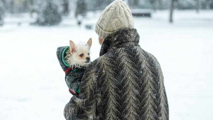 В Ростове ожидается штормовой ветер
