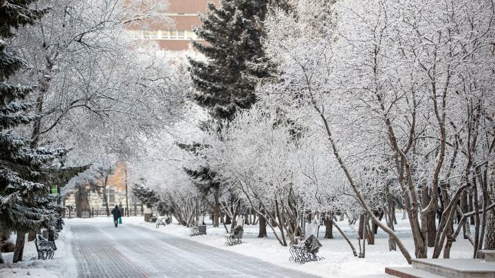 Потепление до -3 градусов и штормовое предупреждение из-за смога: синоптики дали прогноз погоды в Новосибирске
