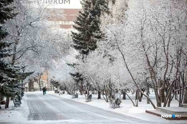 Метели и снегопады начнутся в Новосибирске днем 3 февраля