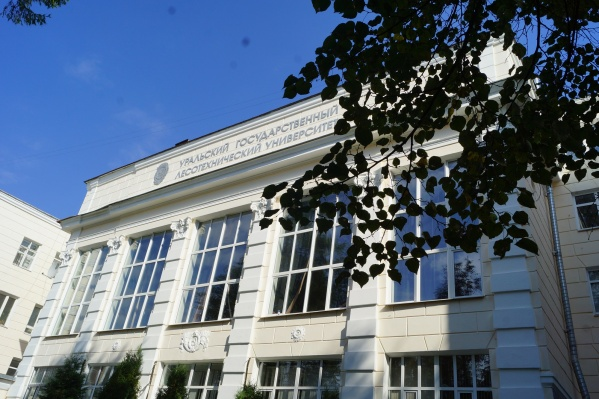 Уральский государственный лесотехнический университет один из старейших в регионе. Он был создан в 1930 году