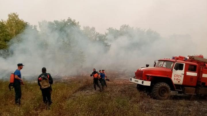 Из-за лесных пожаров в Башкирии ужесточат наказание за поджоги и паникерство