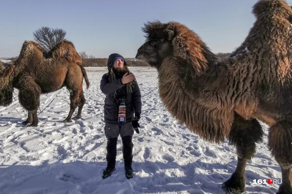 Фотокорреспондент Евгений Вдовин знакомится с верблюдом Машей