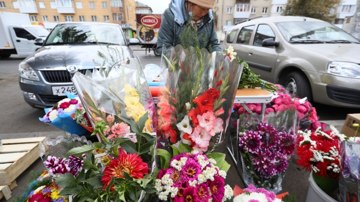 «Гладиолусы смели» (но не все): разбираем садовые букеты на Первое сентября от уральских бабушек