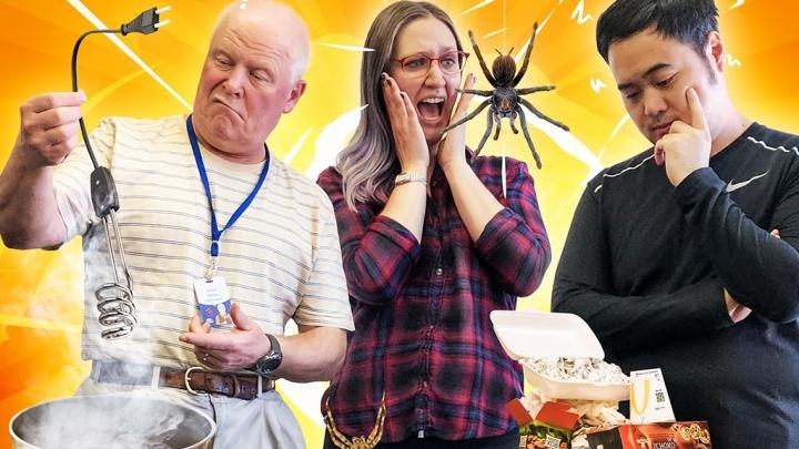 Живут с тараканами и пользуются кипятильниками: иностранцы сравнили быт Англии, России и Австралии