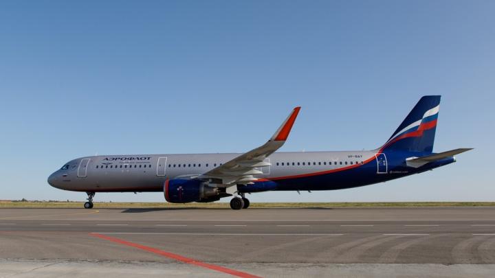 Самолет из Волгограда совершил аварийную посадку в Москве