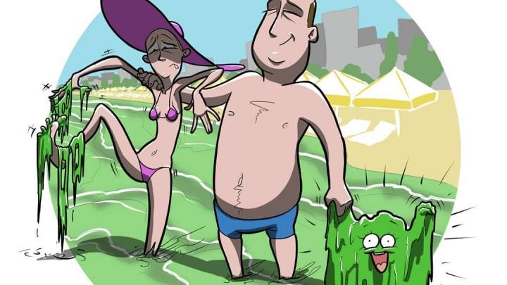 Художник нарисовал карикатуру с купающимися в анапских водорослях. Не все из них довольны морем
