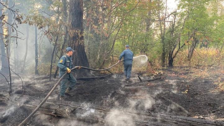Почему в Башкирии так долго тушат лесные пожары? Отвечает замглавы Минлесхоза республики
