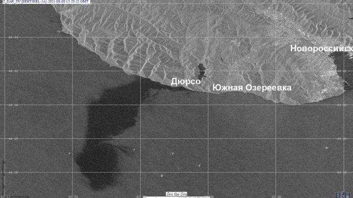 Разлив нефти у Новороссийска оказался в 400 тысяч раз масштабнее, чем заявляли ранее