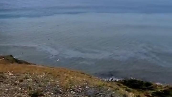 Трубопроводный консорциум заявил, что пятно в Черном море не нефтяное. Его заметили уже в Сукко