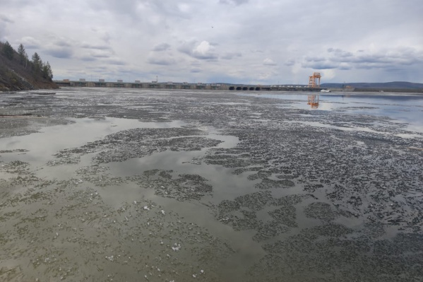 Масштабное загрязнение реки на севере края