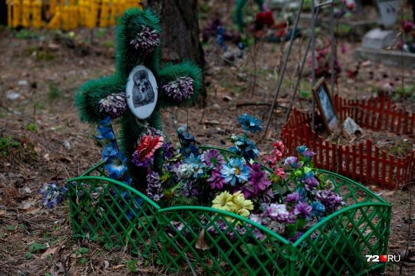 Помимо нелегальных кладбищ для животных есть и другие способы захоронения питомца