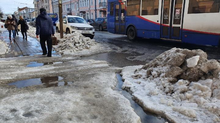 Главный по уборке в Ярославле предложил подождать весны