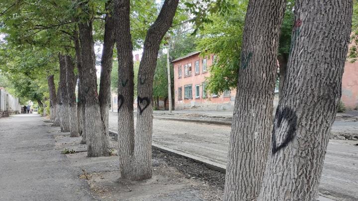 Власти Кургана опровергли информацию о сносе деревьев на улице Кирова