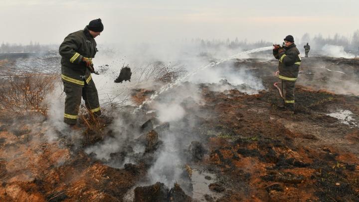 Дым стоит, торф горит: как тушат природный пожар под Екатеринбургом