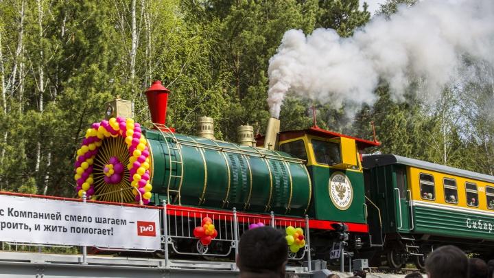 Кормление мангустов, маленький поезд и «Шоу молний»: куда сходить с ребенком 1 июня и сколько на это нужно денег