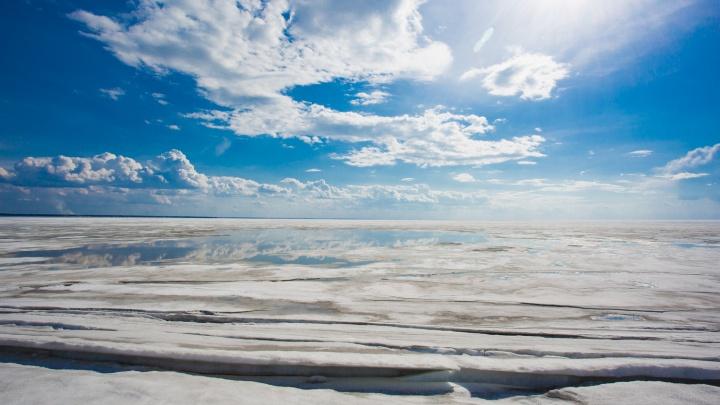 В Новосибирск идет потепление до +4градусов: синоптики рассказали, как долго оно продлится