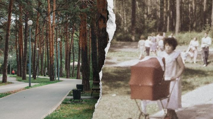 Пережил коммунальное ЧП и забвение в перестройку: как лес тюменских купцов стал модным парком