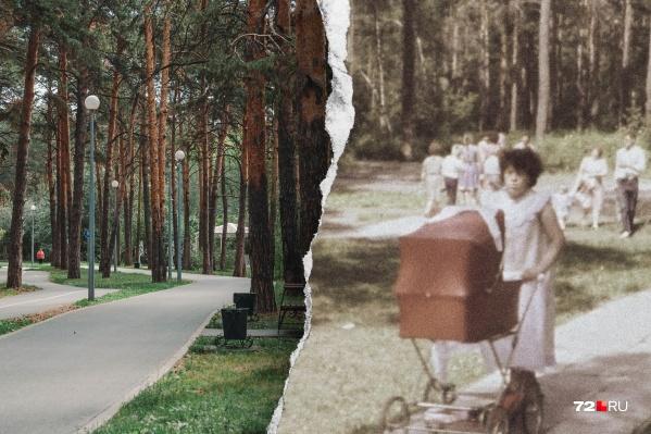 Гилевка сейчас (слева) и ровно 35 лет назад: именно тогда ее преобразили к юбилейному Дню города