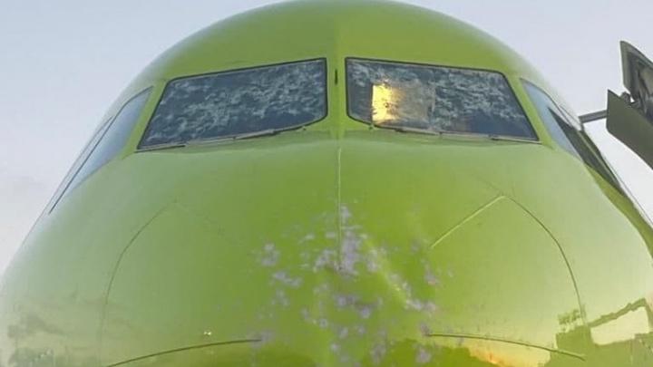 В S7 прокомментировали действия пилотов Airbus, прибывшего из Челябинска в Москву с трещинами на лобовом стекле