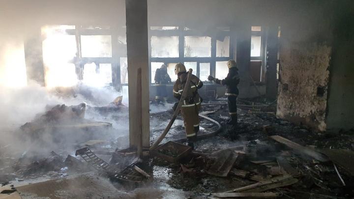 «Скорее всего, искра от сварки»: в Волгограде сгорел закрытый на ремонт манеж ВГАФКа - видео пожара