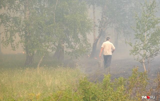 Восточные районы Башкирии охватил дым от пожаров