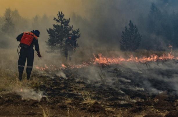 Бывший сотрудник МЧС объяснил, почему пожарные не успели спасти поселки от огня на юге Челябинской области