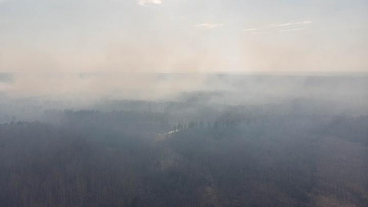 Тюмень заволокло смогом. Власти назвали причины сильного задымления в городе