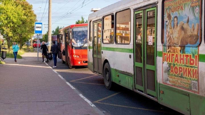 «Хлынул кипяток зеленого цвета»: в Ярославле ошпарило ноги пассажиру автобуса