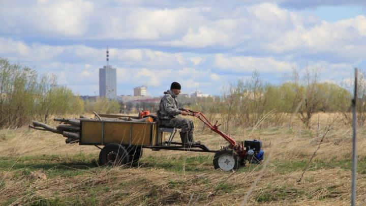 Дачники и садоводы Архангельской области открыли сезон
