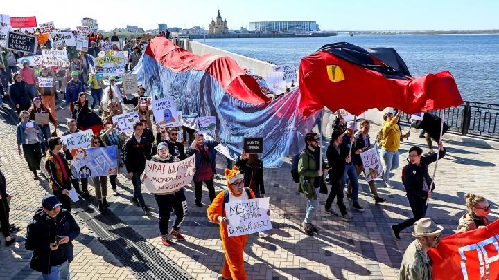 Монстрация без демонстрации: организаторы предложили абсолютно новый формат мероприятия