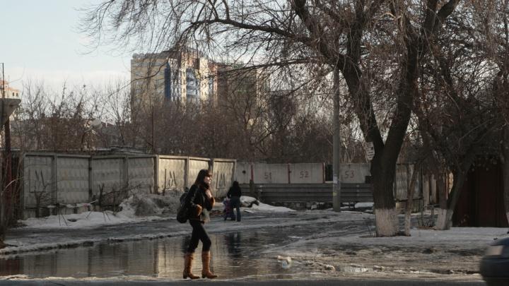 Весна пришла: в Самарской области потеплеет до+11