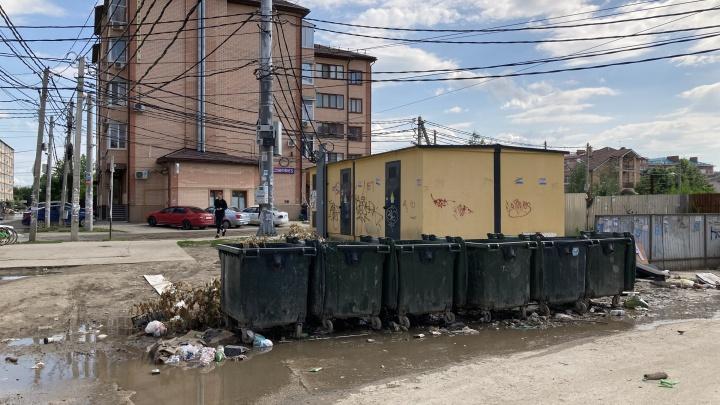 Вонь, крысы и тараканы. Депутат Гордумы Краснодара — о главных проблемах с вывозом мусора