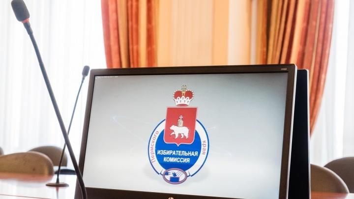 В Пермском крае протестируют систему дистанционного электронного голосования — через интернет