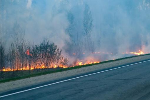 Во времяособого противопожарного режима в Новосибирской области размер штрафов увеличили вдвое