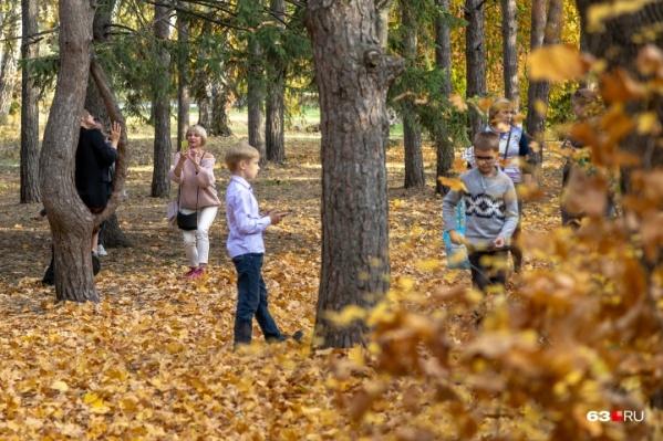 Прогулки по осеннему лесу успокаивающе действуют не только на взрослых, но и на детей