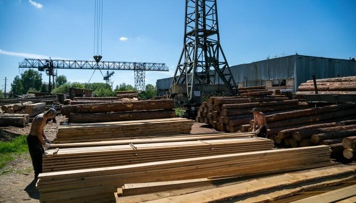 В Богучанском районе планируют строительство деревоперерабатывающего комплекса